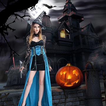 Halloween Sexy Lace Sleeve Dress Costumes-Newchic-